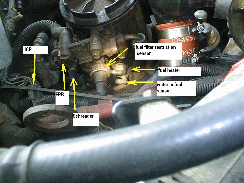 16110d1359497651 96 f250 7 3l turbo won t start but turns over fuelheaterconnection2 96 f250 7 3l turbo won't start but turns over diesel forum