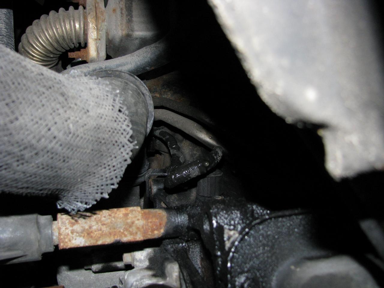 Oil Seepage Normal Possible Leak