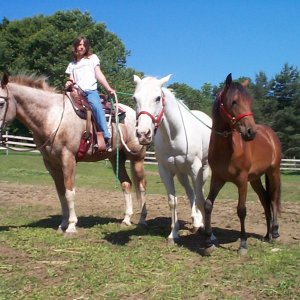 Mandy riding Diesel with Buddy and Jessie next to them